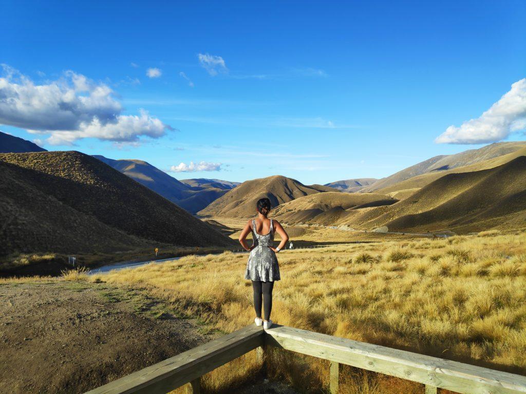 Apply Visa Online New Zealand
