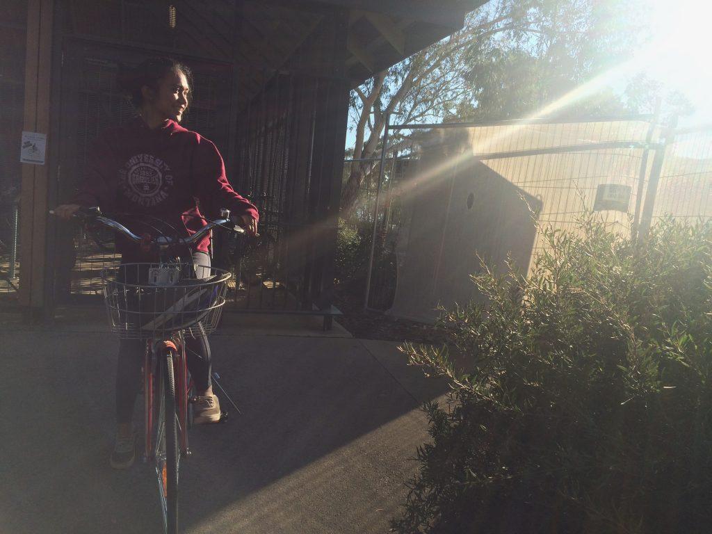 Sepeda di Canberra