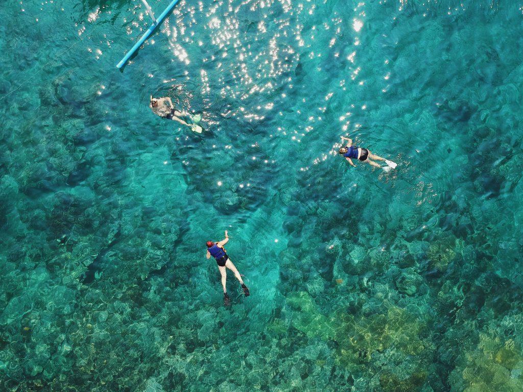 snorkeling taman nasional bali barat